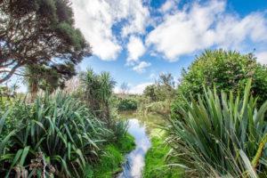 Anderson Park - Ferndale